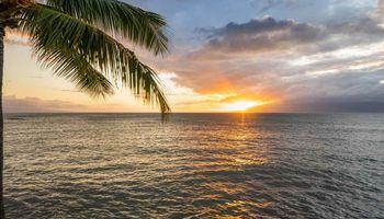 Pohailani Maui condo # 210, Lahaina, Hawaii - photo 1 of 30