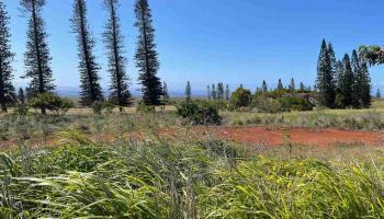 0 Mahiki Pl 444 Maunaloa, Hi 96770 vacant land - photo 1 of 11