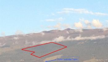 0 Mauka 'Alae Rd LP GR 9325, AP 3 WAIAKOA Kula, Hi 96790 vacant land - photo 1 of 19