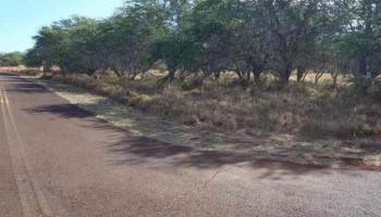 nhn Awawa Rd 21 Maunaloa, Hi  vacant land - photo 1 of 8
