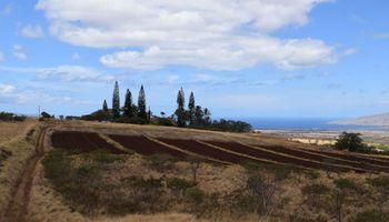 Omaopio Rd  Kula, Hi  vacant land - photo 1 of 19