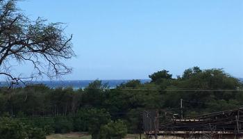 1603 Puili Place  Kaunakakai, Hi  vacant land - photo 1 of 13
