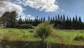 0 Puuomalei Rd , Hi 96708 vacant land - photo 2 of 6