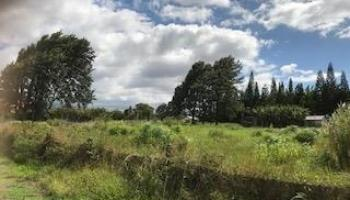 0 Puuomalei Rd , Hi 96708 vacant land - photo 3 of 6