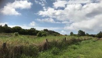 0 Puuomalei Rd , Hi 96708 vacant land - photo 4 of 6